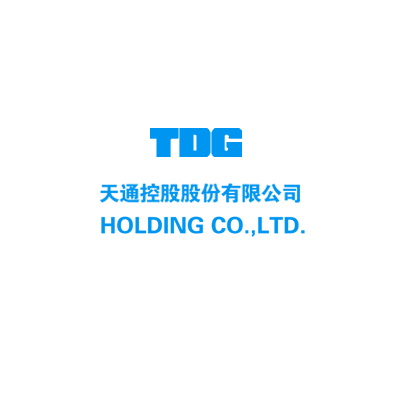 TDG Holging Co. Ltd. - A European and Chinese Business Management Partner